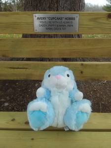 Avery's Bunnay and Bench